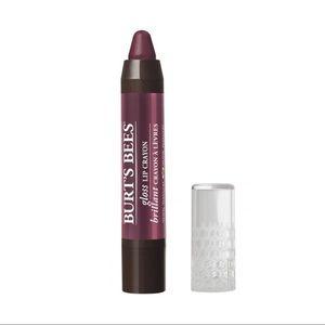 NWT - Burt's Bees 100% Natural Gloss Lip Crayon 🐝